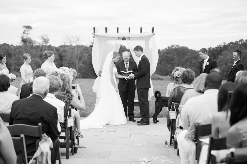 Liz and Clarke Wedding-1087
