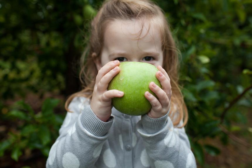 Apple Orchard-110