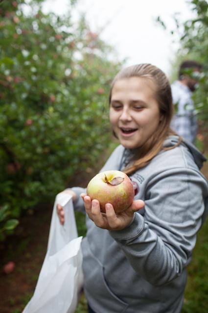 Apple Orchard-14