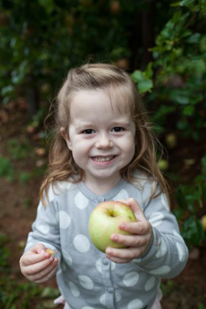 Apple Orchard-21